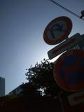 20090924.jpg